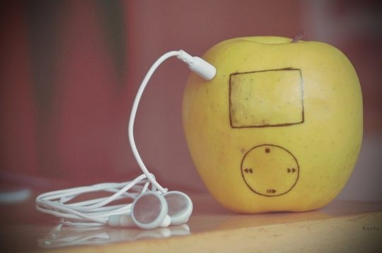 1272616591_the-real-ipod.jpg